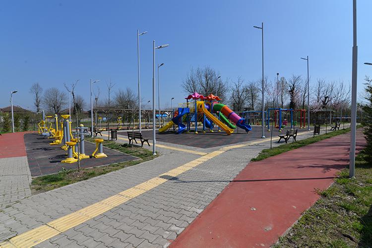 Park Çalışmaları